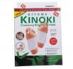 KINOKI DETOX WFH-1007 FOOT PADS