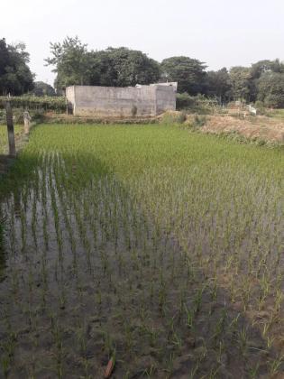 Land for sell Uttora Dhaka  / নিষ্কণ্ঠক জমি বিক্রয় হবে ,  জমির পরিমান ৫ কাঠা   উত্তরা  , চামুরখান
