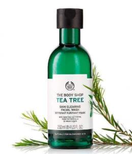 Tea Tree Skin Clearing Facial Wash – 250ml