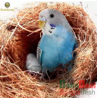 Comfortable Bedding for Small Birds and Animals, Nest Lining Material, Great for Nest Building and Hideouts