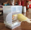 1pcs Premium China New Model Bird Automatic Feeding Pot ( খাবার অপচয় হয় না