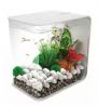 White Small Glossy Stones for Home Decorative, Vase Fillers, Aquarium Fish Tank,Garden